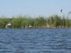 шацькі озера ціни