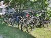 ozero-svityaz.com.ua Тел.: 0502743110 Аренда велосипедов. Фото. Свитязь -70 метров