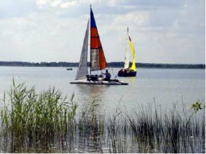 У вітряну погоду багато відпочивальників займаються різними видами парусного відпочинку