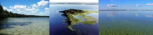 Фото Відпочинок на озері Світязь, Шацьких озерах за телефоном 0964882501.